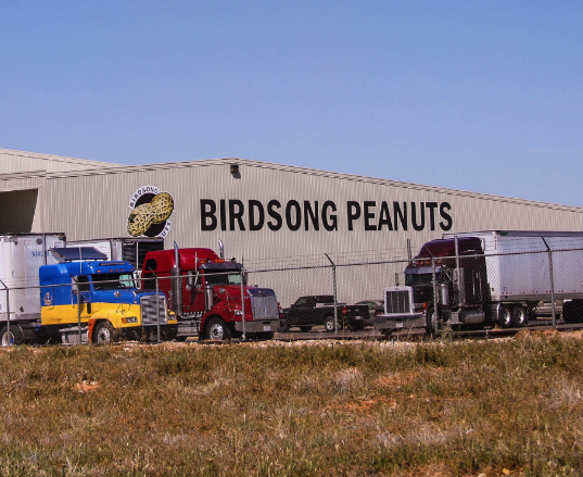 Birdsong Peanuts Brownfield Texas
